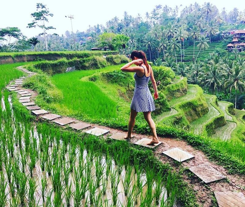 Nggak Cuma Pantai, 5 Wisata Alam dengan Pemandangan Memukau di Bali Ini Juga Wajib Dikunjungi