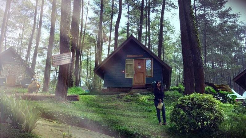Camping di Grafika Cikole Lembang yang Suasananya Mirip Perkemahan Eropa, Dijamin Betah!