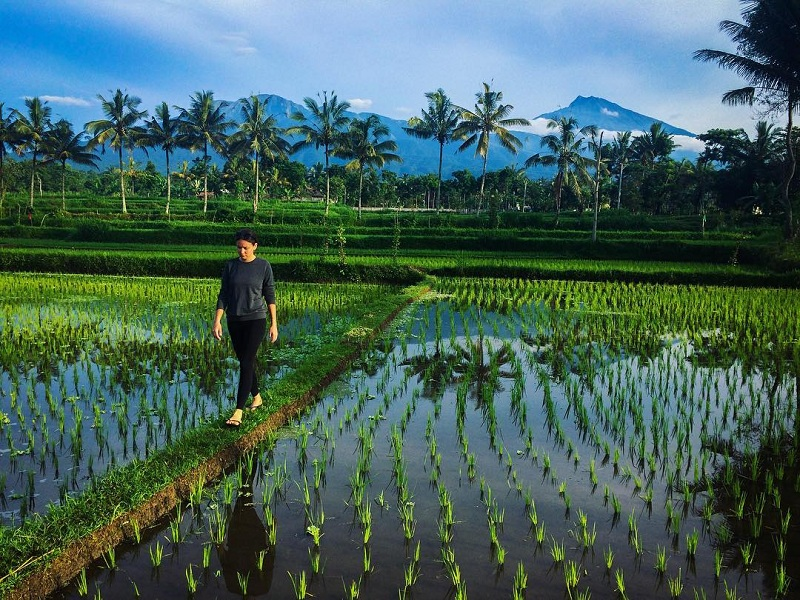 Jalan-jalan ke Desa Tetebatu di Kaki Gunung Rinjani, Cuci Mata Sambil Mengenal Budaya Lokal
