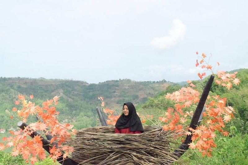 Di Bukit Mojo Yogyakarta, Kamu Bisa Berfoto di Ketinggian dengan Panorama Asri dan Menawan